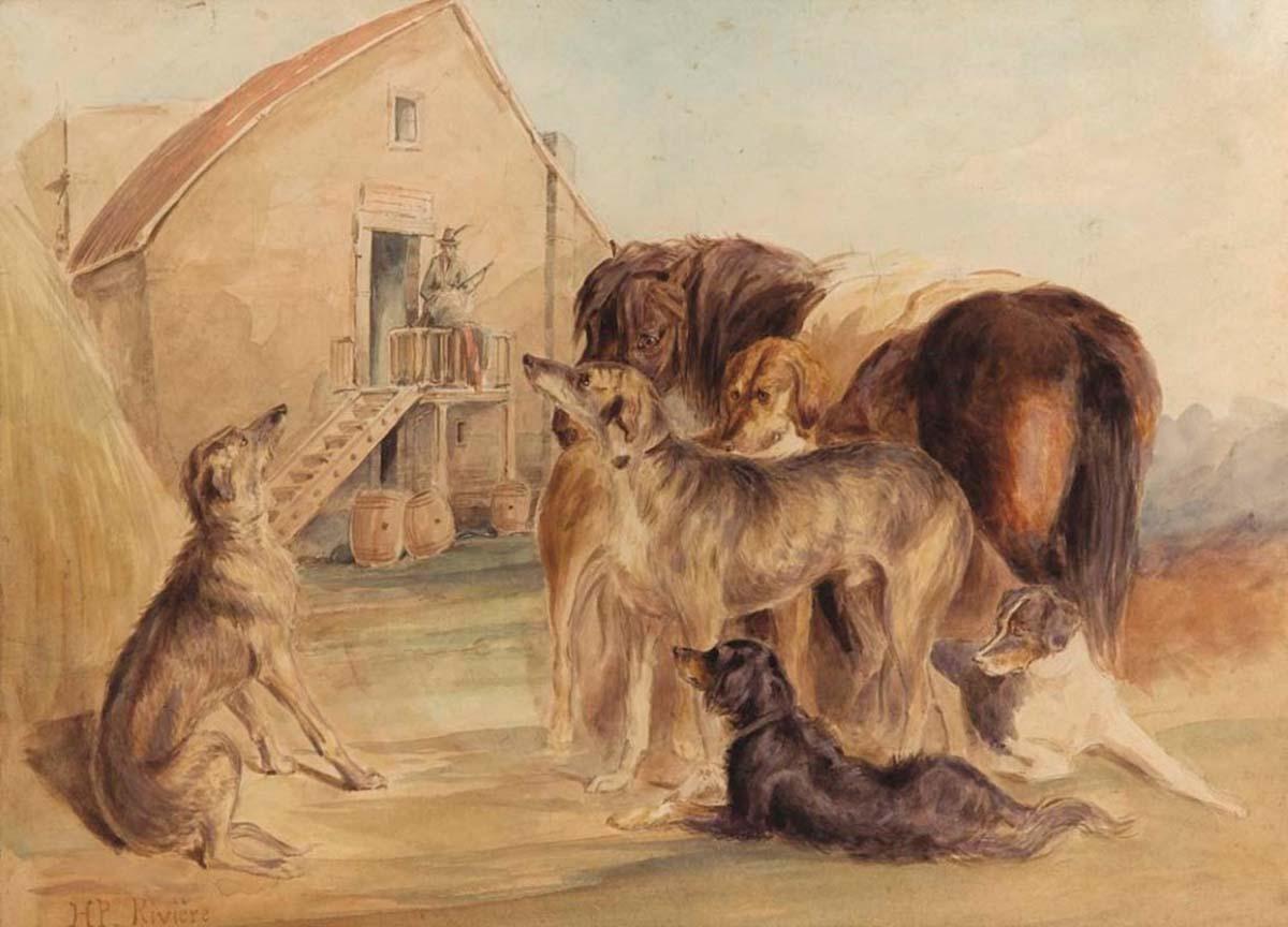 Cavallo e Cani, 37x51, Watercolour on Paper