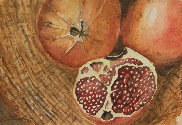 Melograni, 23x34, Watercolour on Paper